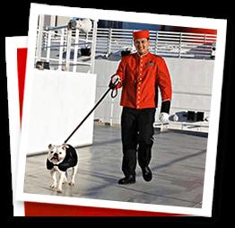 Cunard Line2018-2019-2020