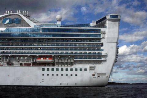 Star Princess Cruises 2018 2019 133 Day Twin