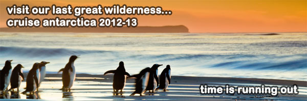 Featured Cruise Region - Antarctica
